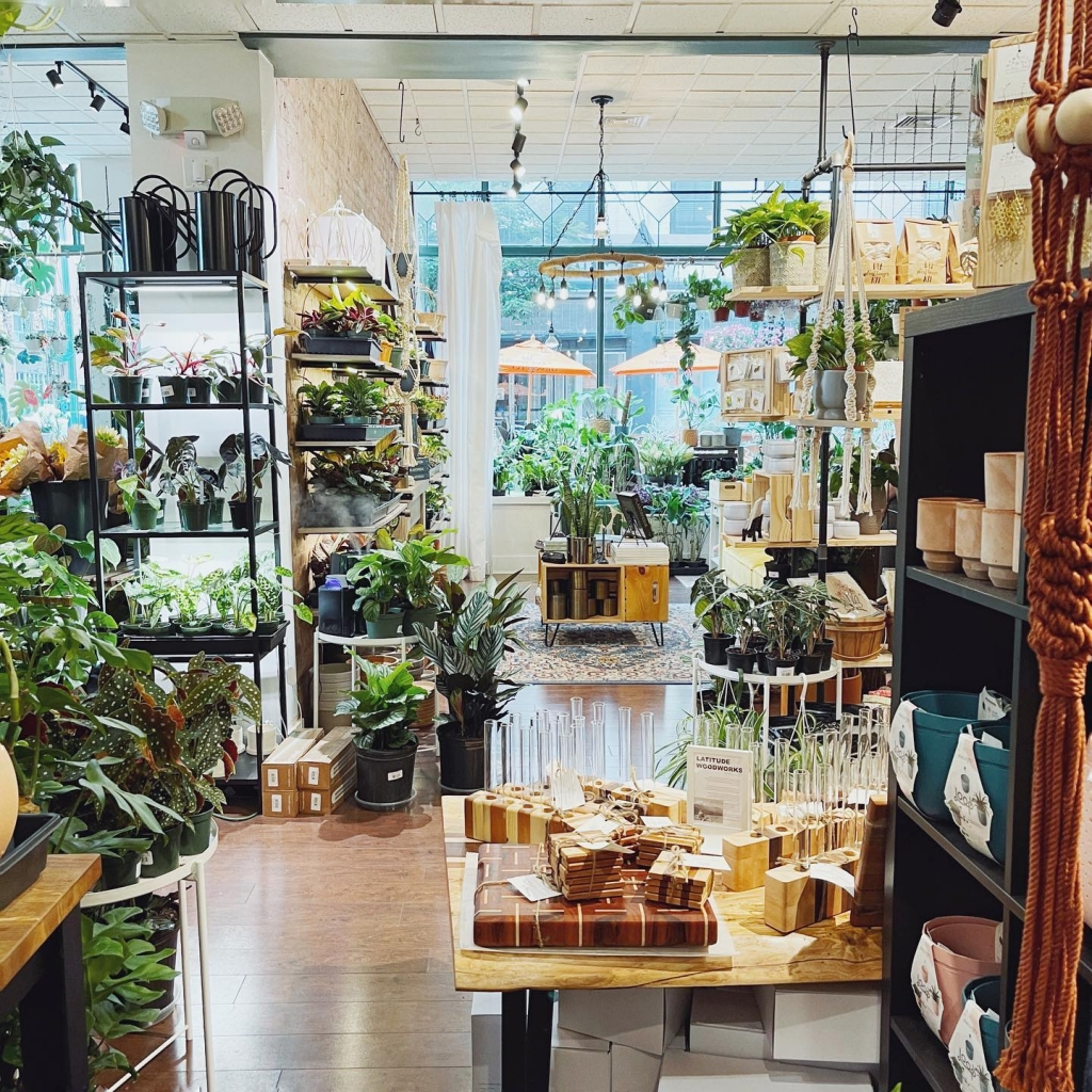 An inside shot of the Bark and Vine store full of indoor house plants and planters.